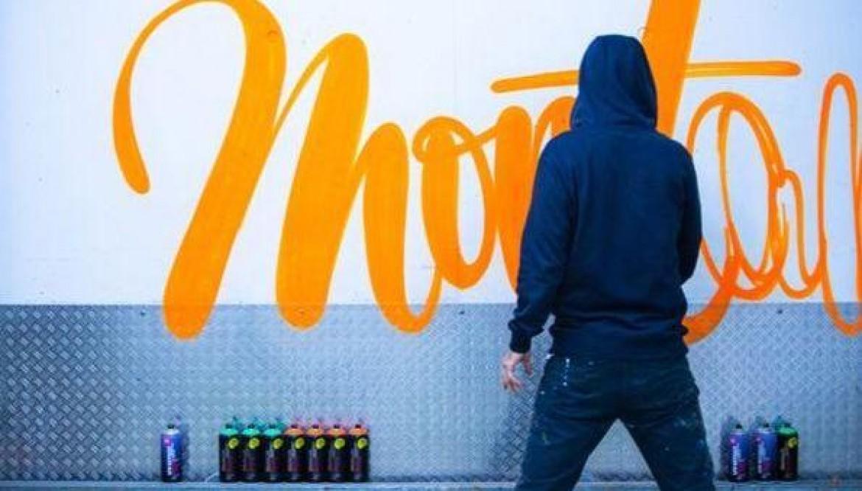 Новинки и большое поступление продукции MONTANA CANS